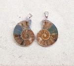 2er Set Ammoniten Anhänger klein gefasst als Paar an Öse ca. 25 - 30 mm
