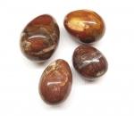 versteinertes Holz - Ei aus Madagaskar ca. 450-499 Gramm