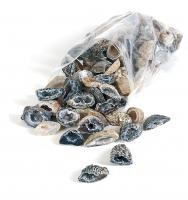 2,5 Kg Nussgeoden aus Achat B / ca. 75 Stück