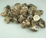 Turitella-Achat aus den USA Trommelsteine VE = 500 Gramm